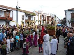 domingo_ramos2