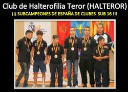 halteror_sub16