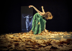 auditorio_danza