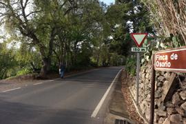 camino-osorio2