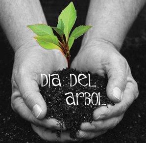 05_dia-del-arbol